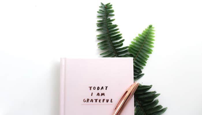 Aerial view of a pink gratitude journal with the words Today I Am Grateful next to a rose gold pen and green foliage
